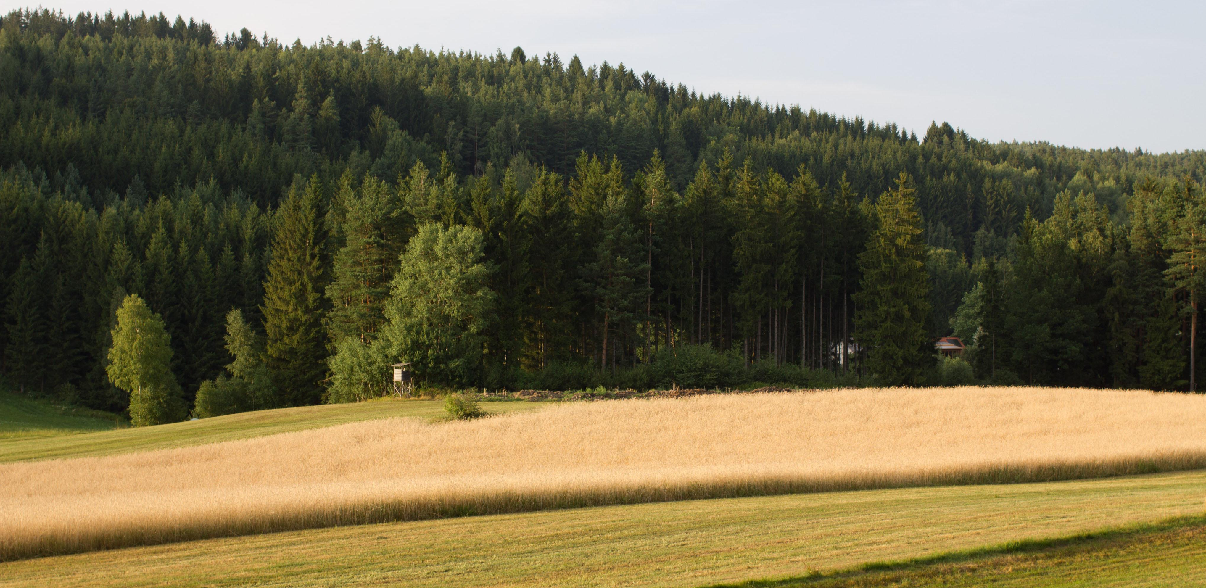Kreativtage Bad Großpertholz